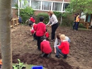 School children digging