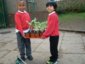 School childen carrying plant tray