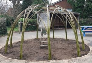 Willow dome at King David school