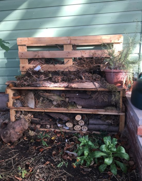 Bug hotel at Uffculme School